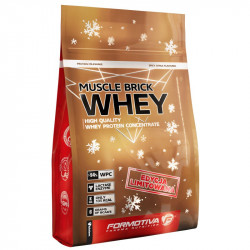FORMOTIVA Brick Whey Limited Edition 700g