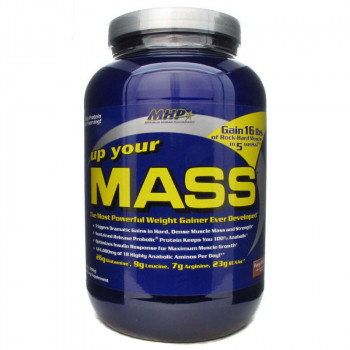 MHP Up Your Mass 931g