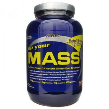 MHP Up Your Mass 931g