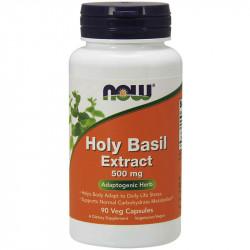 NOW Holy Basil Extract 500mg 90vegcaps
