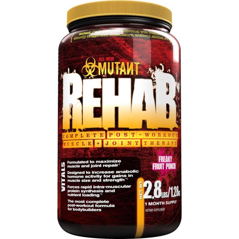 PVL Mutant Rehab 1280g