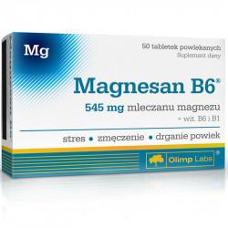 OLIMP Magnesan B6 50tabs
