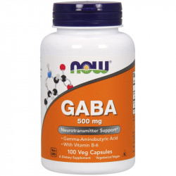 NOW Gaba 500mg 100vegcaps