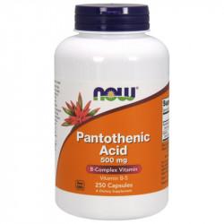 NOW Pantothenic Acid 500mg 100caps