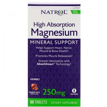 NATROL High Absorption Magnesium 250mg 60tabs