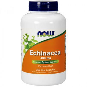 NOW Echinacea Extract 59ml