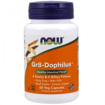 NOW Gr8-Dophilus 60vegcaps